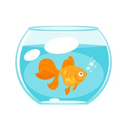 Vector cartoon style illustration of home animal pet - gold fish in aquarium. Isolated on white background.