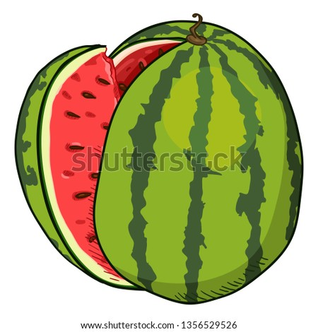 Vector Cartoon Watermelon with Red Pulp