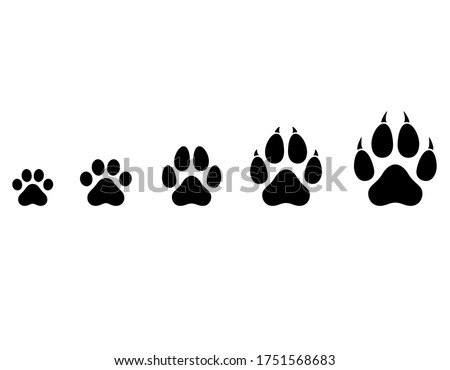 Vector cat and dog paws of different sizes