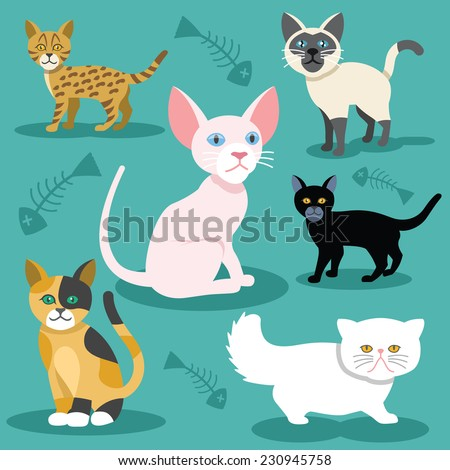 vector cats flat icons set