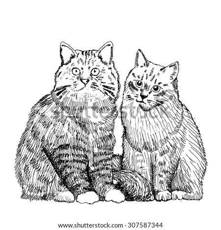 vector cats white and black 2