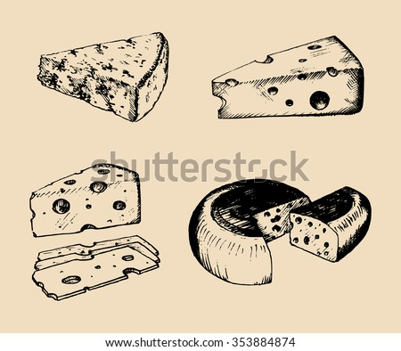 Vector cheese set. Vintage hand drawn parmesan, cheddar, edam etc illustrations. Dairy products sketches.