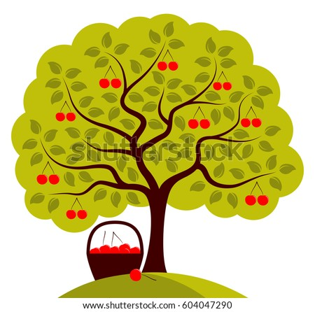 vector cherry tree and basket