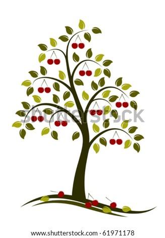 vector cherry tree on white background