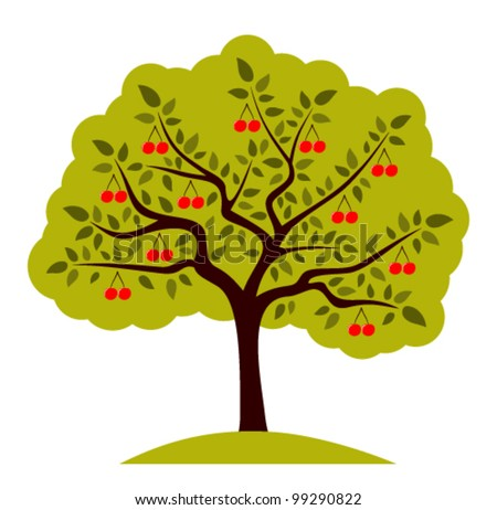 vector cherry tree on white background