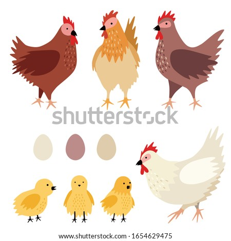 Vector chicken family (hens with chicks and eggs). Set of poultry clip art isolated on white background