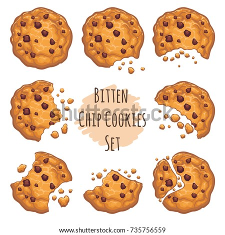 Vector chocolate crumbs chips isolated on white background. Homemade choco chip cookies vector illustration