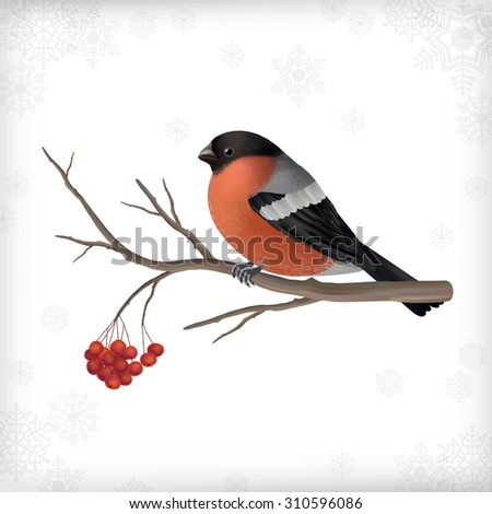 vector christmas card with bird