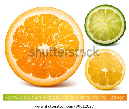 Vector citrus fruits: orange, lime and lemon. - stock vector