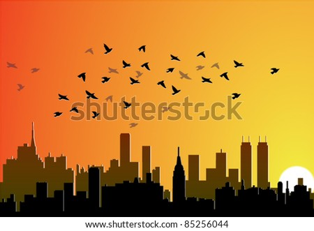 vector city background with flying birds