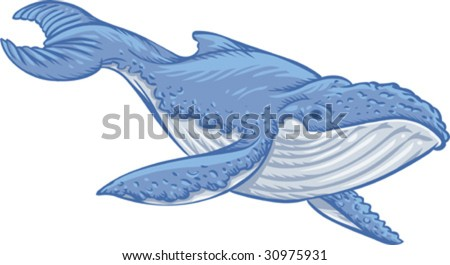 Vector, Clip Art illustration of blue whale, symbol of marine environment, wild life preservation and ecology. Hand drawn artwork with NO gradients.