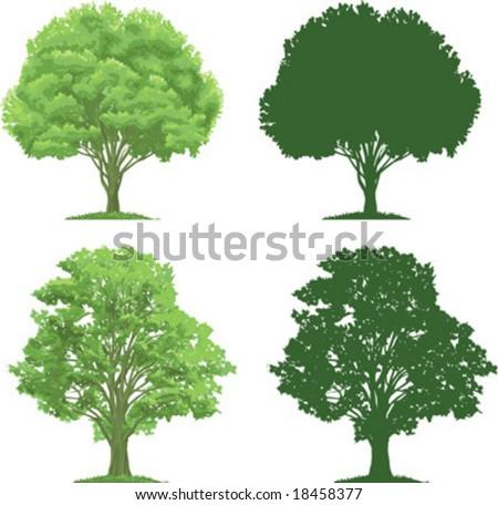 tree clip art. stock vector : vector clip art