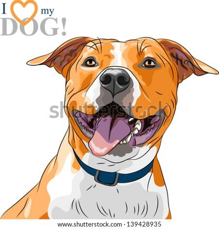 vector closeup portrait of the