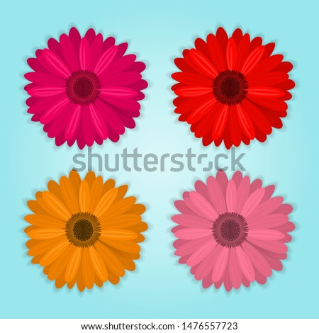 vector collection of colored