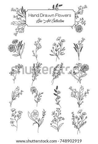 Vector Collection of Hand Drawn Wild Flowers