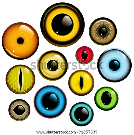 Vector collection of human and animal eyes
