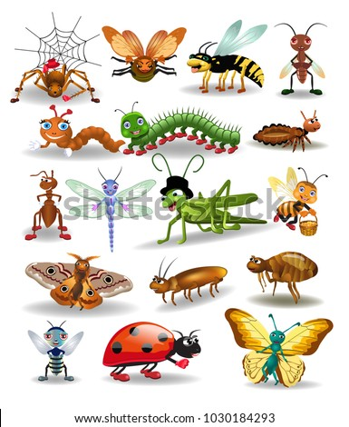 vector collection of insects