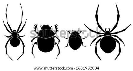 vector collection of 4 insects