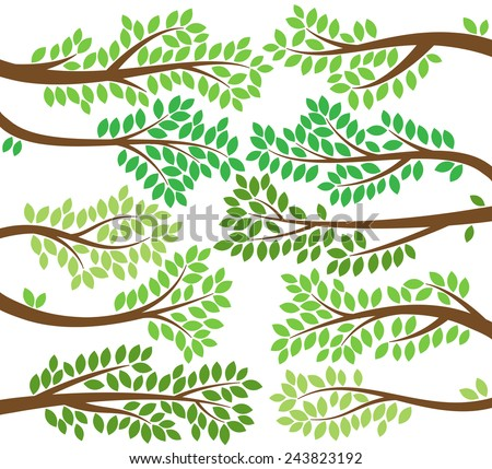 vector collection of leafy tree