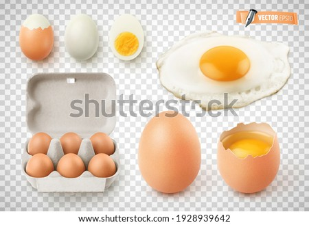 Vector collection of realistic eggs, fried egg, cardboard egg box and boiled eggs on transparent background