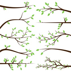 Vector Collection of Stylized Branch Silhouettes