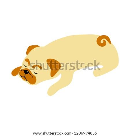 Stock Photo vector color cute pug dog sleeping pet animal  cartoon doodle pattern simple childish design for textile paper