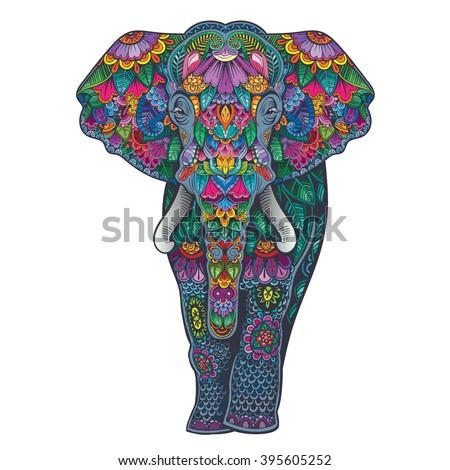 Vector Color Ornament Elephant Illustration