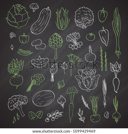 Vector colored hand drawn doodle vegetables icons set on black chalkboard illustration. Healthy food products. Vegan elements. #1099429469