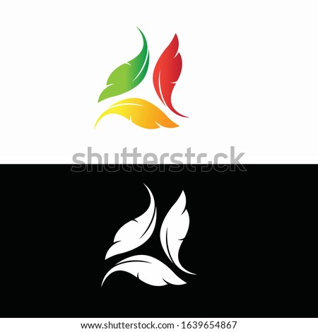 vector 3 colorful feather logo