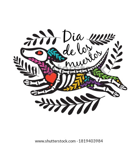 Vector colorful postcard. Dia de los Muertos, Day of the dead or Halloween concept. Flying dog skeleton, with floral design, isolated on white background Foto stock ©