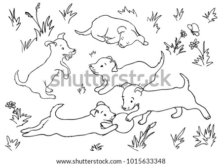vector coloring page with five