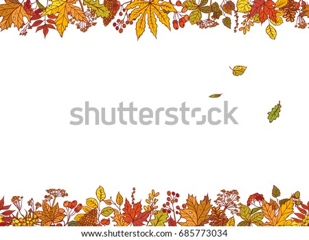 vector colourful outline