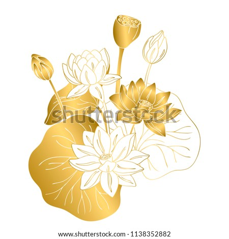 vector contour color gold white lotus asian flower symbol peace on white