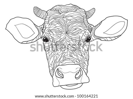 vector contour cow - vector illustration