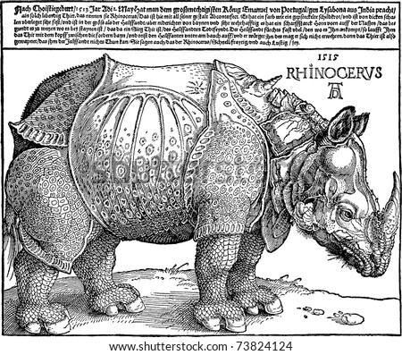 vector copy of a rhinoceros