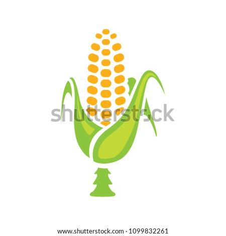 vector corn - food illustration, agriculture natural vegetable symbol - healthy nutrition sign #1099832261