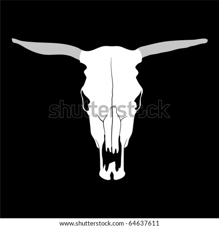 Vector cow skull on black background (illustration)