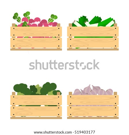Vector crate with fresh fruits and vegetables. Natural, healthy food concept. Organic fruits and vegetables from the farm collected in the wooden box. Flat design style.