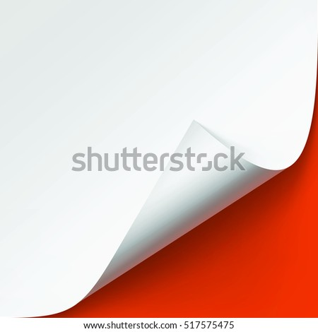 Vector Curled corner of White paper with shadow Mock up Close up Isolated on Orange Background