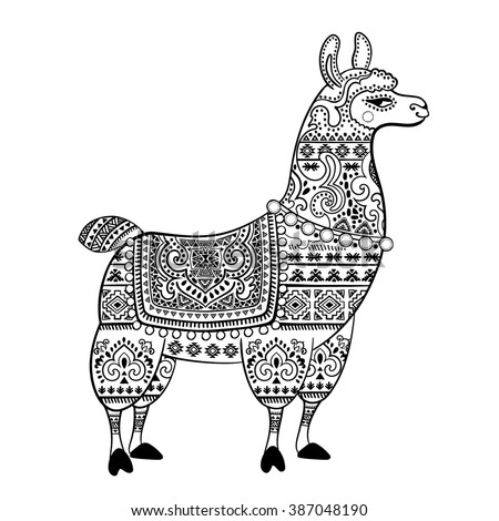 vector cute alpaca llama animal