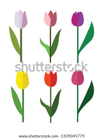 vector cute colorful six tulips