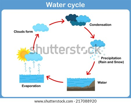 the cycle of how to make water clean