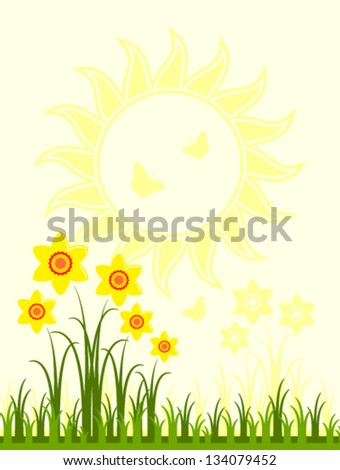 vector daffodils in grass and sun