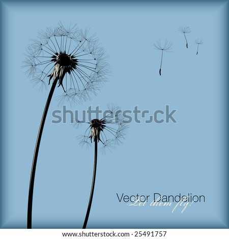 vector dandelion - Let them fly! All seeds are separate objects.