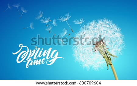 vector dandelion with flying seeds on cloudy sky