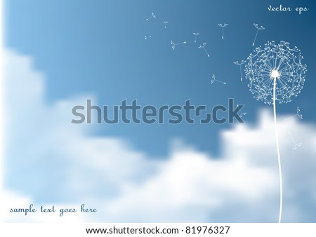 vector dandelion with flying seeds on  sky