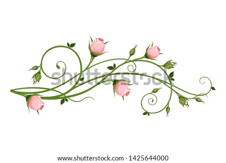 Rose Vine Vector At Vectorified Com Collection Of Rose Vine