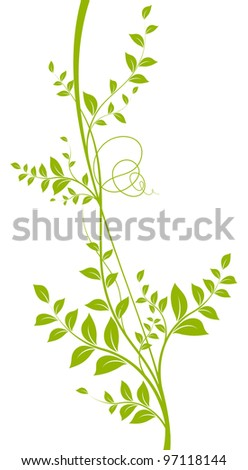 vector decorative element. Green liana with leaves over a white background