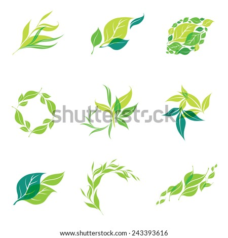 Vector design elements for organic natural logos