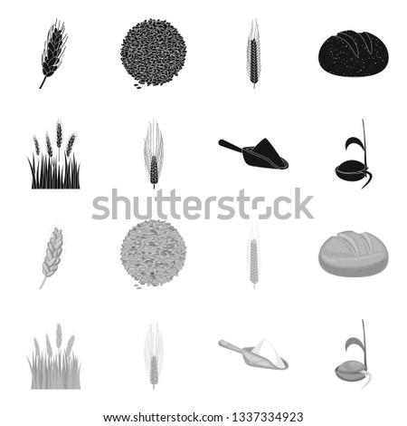 Vector design of agriculture and farming icon. Collection of agriculture and plant  vector icon for stock. #1337334923